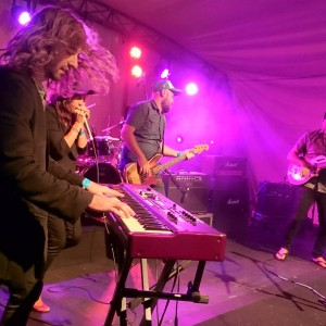Wignalls-Blues-Festival-Albany-2015-034